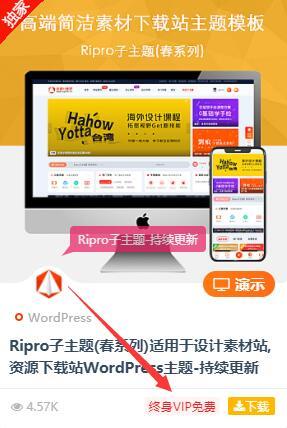 RiPro主题美化:添加文章VIP资源判断闪烁标识插图